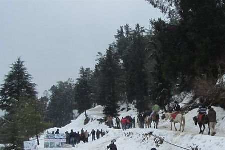 Aurangabad to Shimla honeymoon tour packages