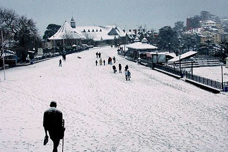 Bhopal to Shimla honeymoon tour packages