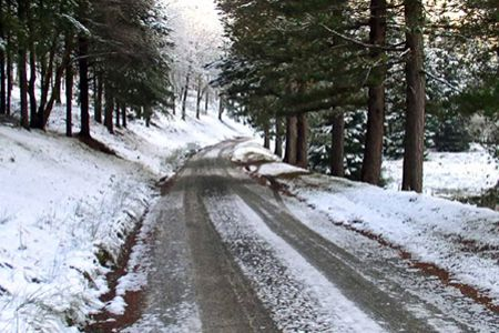 Cochin to Shimla honeymoon tour packages