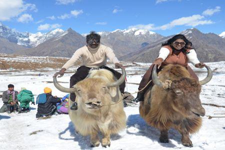 Coimbatore to Shimla honeymoon tour packages