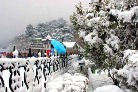 Delhi to Shimla honeymoon tour packages
