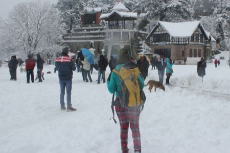 Kerala to Shimla honeymoon tour packages