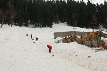 Kolkata to Shimla honeymoon tour packages